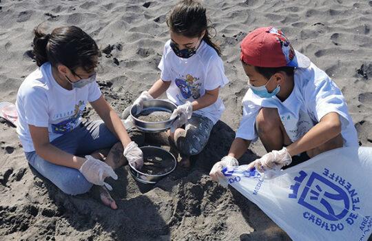 Limpieza de playa y fondos marinos realizada en Tenerife