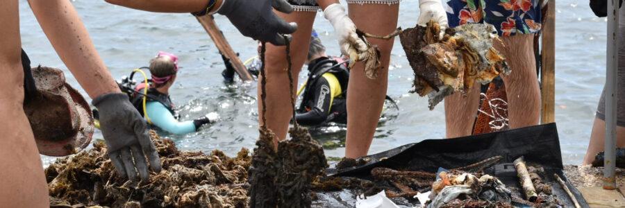 Próxima limpieza de playa y fondos marinos